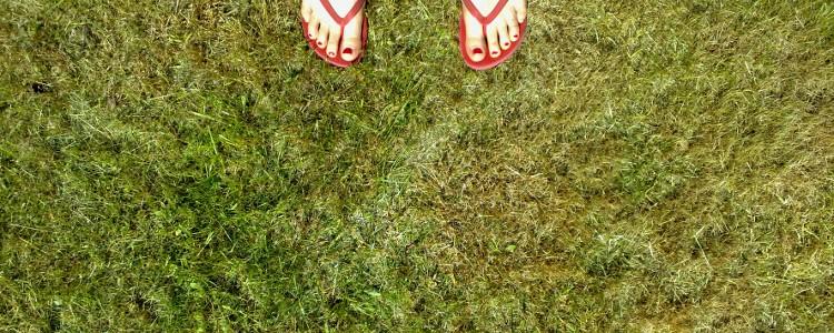 grass and flip-flops